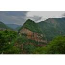 Peruvian Selva Andina Decaf